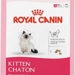 Royal Canin kitten dry food